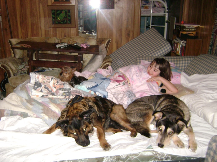 Cujo, Grace, Vader and the Youngest taking up Grandma's bed.